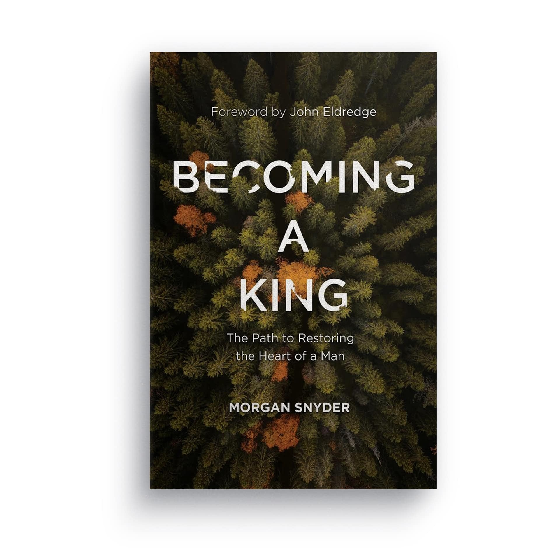 Becoming a King Book